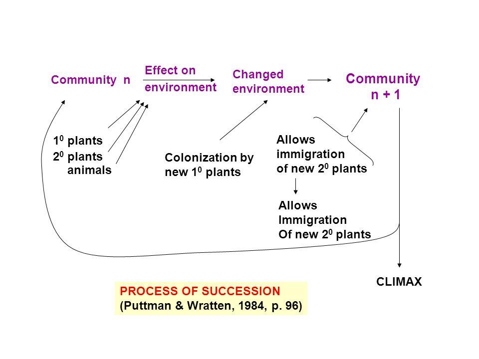 PROCESS OF SUCCESSION (Puttman & Wratten, 1984, p.