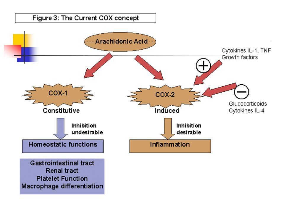 Struktur enzim COX Keduanya merupakan dimer yang terikat pada membran mikrosomal 4 domain Domain Dimerization Domain yang terikat Membran Domain katalitik– beda pada struktur Domain peptida Terminal– beda panjang
