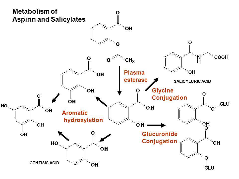 Glycine Conjugation Glucuronide Conjugation GENTISIC ACID SALICYLURIC ACID Aromatic hydroxylation Plasma esterase Metabolism of Aspirin and Salicylate
