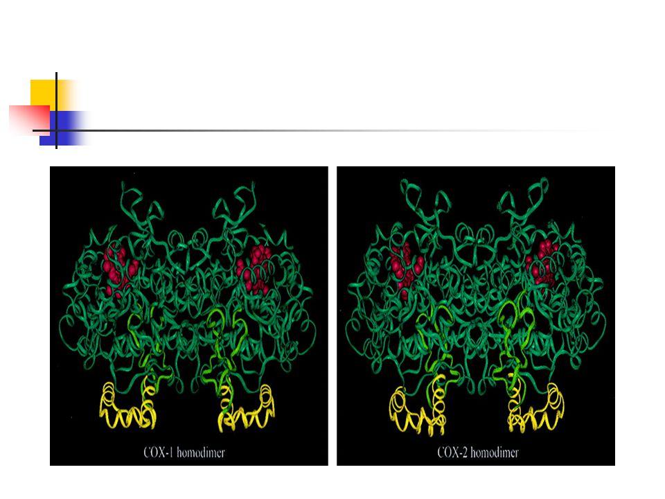 Inhibitor Selektif COX -2 Penghambatan COX-2 : efek anti-inflamasi Penghambatan COX-1 : toksisitas NSAID, a) peptic ulcer dan resiko perdarahan, b) memperlama bleeding time; c) renal insufficiency.