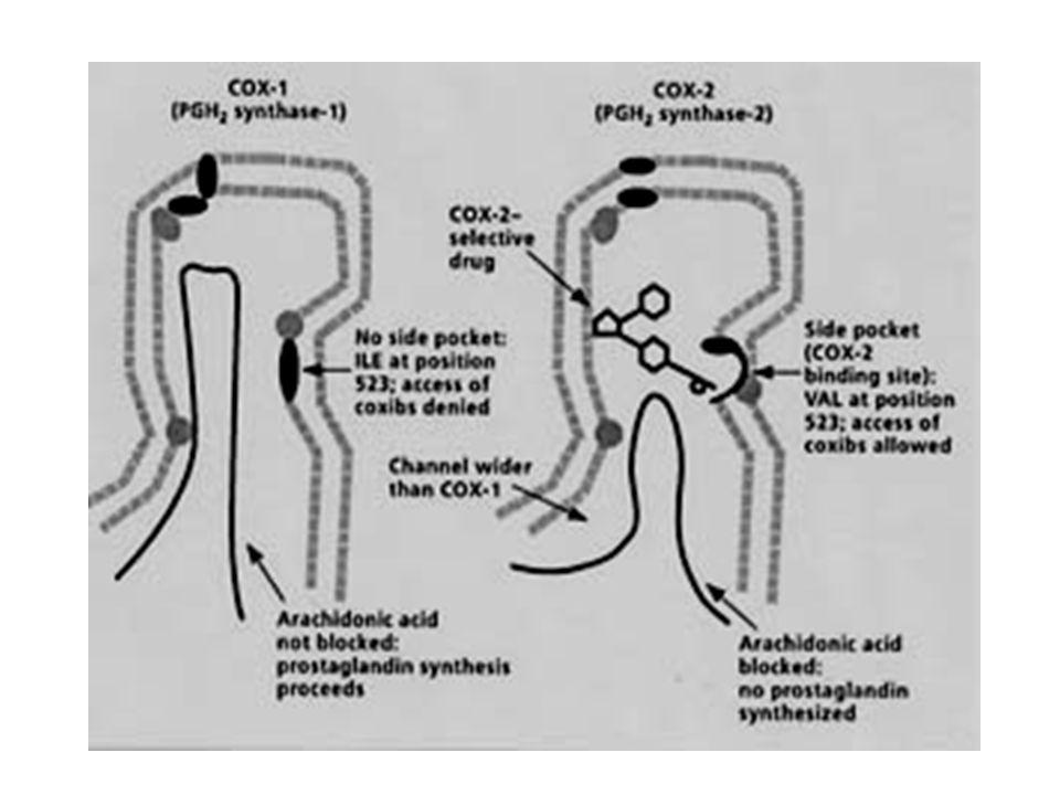 Golongan inhibitor selektif COX-2 1.