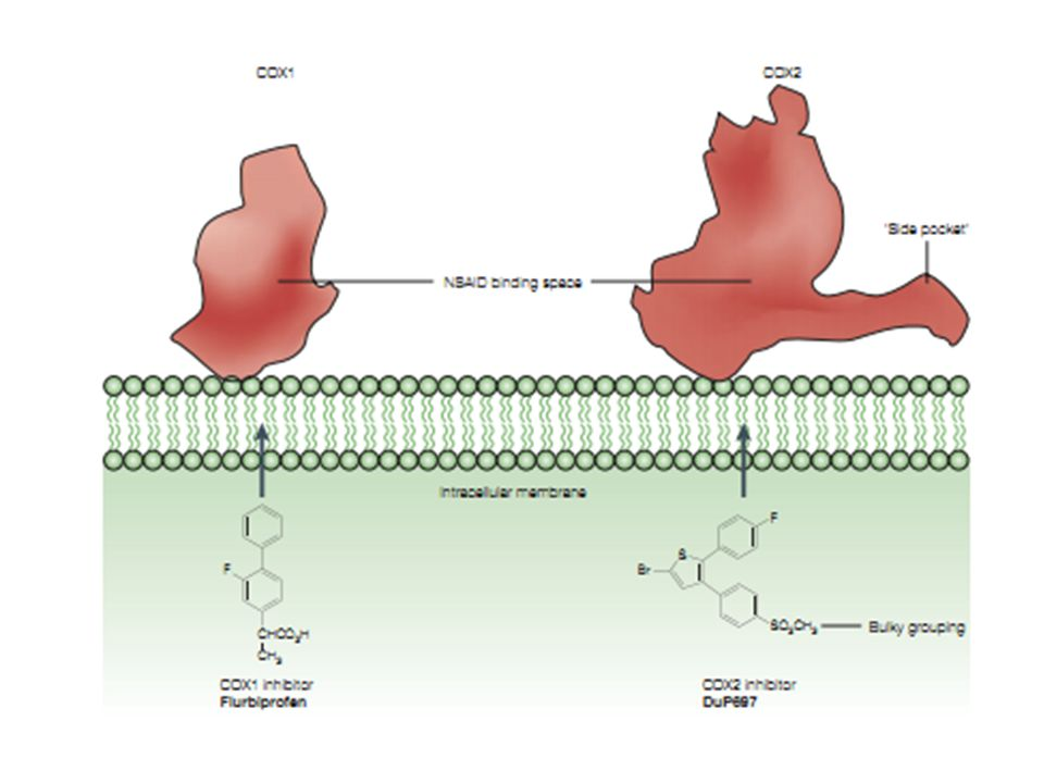 Meloxicam selective cox-2 inhibitor (by FDA approving)