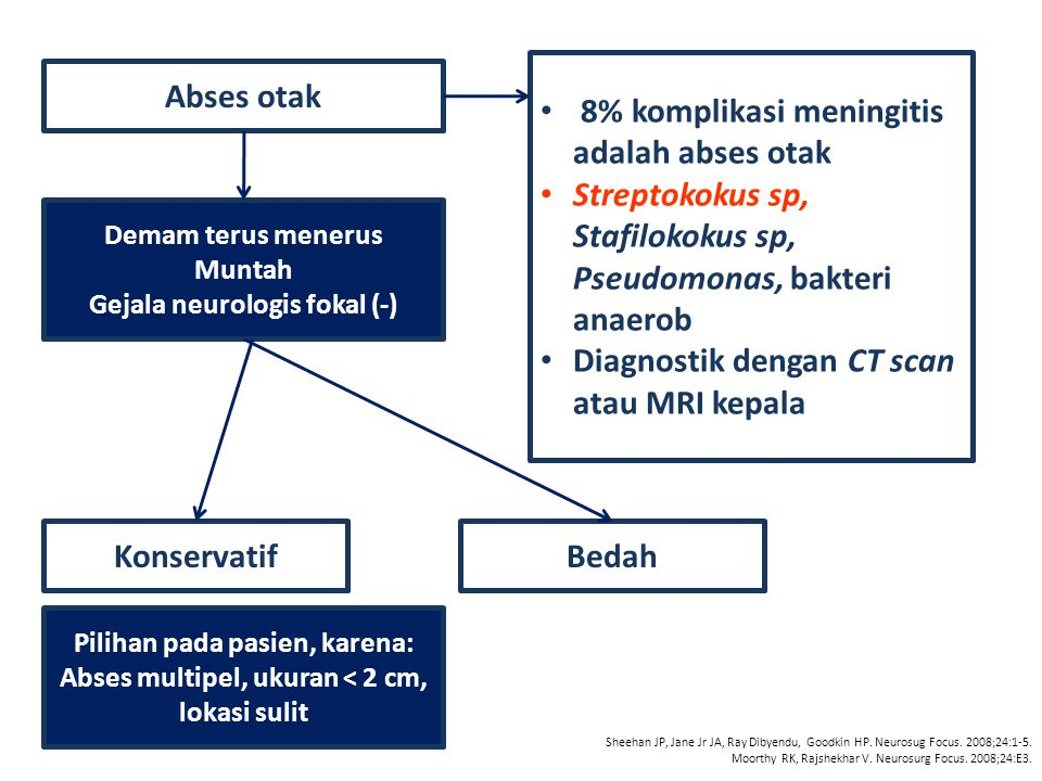 Abses otak Demam terus menerus Muntah Gejala neurologis fokal (-) 8% komplikasi meningitis adalah abses otak Streptokokus sp, Stafilokokus sp, Pseudom
