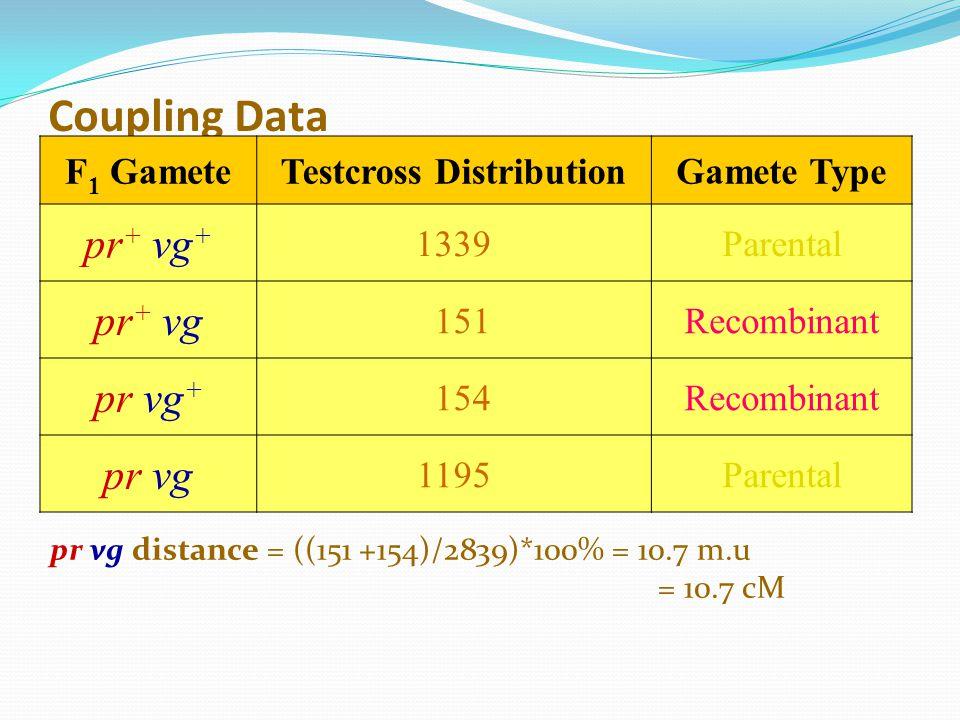 Coupling Data F 1 GameteTestcross DistributionGamete Type pr + vg + 1339Parental pr + vg 151Recombinant pr vg + 154Recombinant pr vg 1195Parental pr v