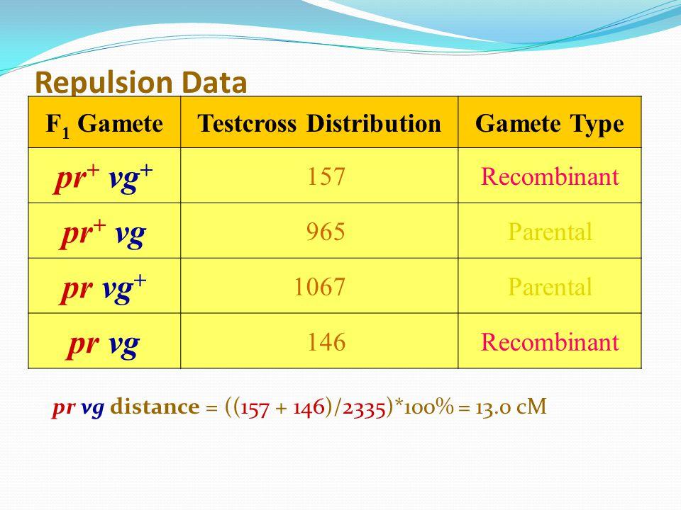 Repulsion Data F 1 GameteTestcross DistributionGamete Type pr + vg + 157Recombinant pr + vg 965Parental pr vg + 1067Parental pr vg 146Recombinant pr v