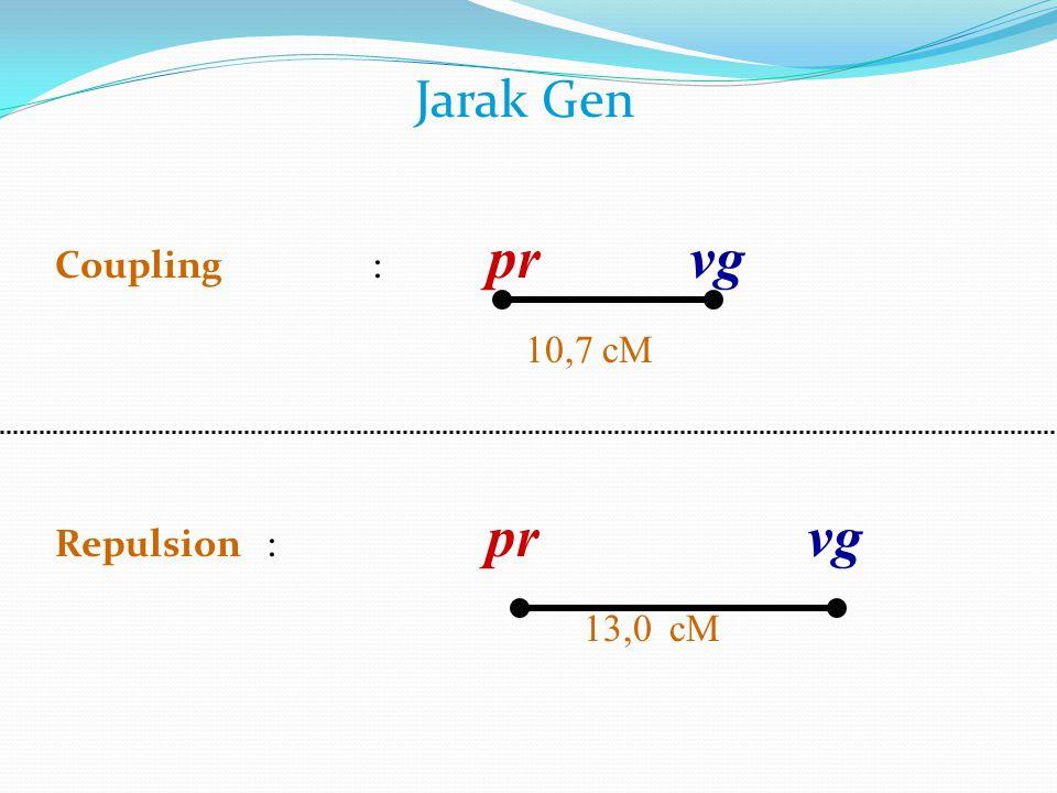 Jarak Gen Coupling: pr vg 10,7 cM Repulsion: pr vg 13,0 cM