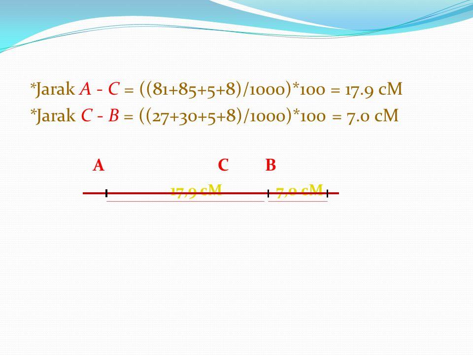 * Jarak A - C = ((81+85+5+8)/1000)*100 = 17.9 cM *Jarak C - B = ((27+30+5+8)/1000)*100 = 7.0 cM A CB 17,9 cM 7,0 cM