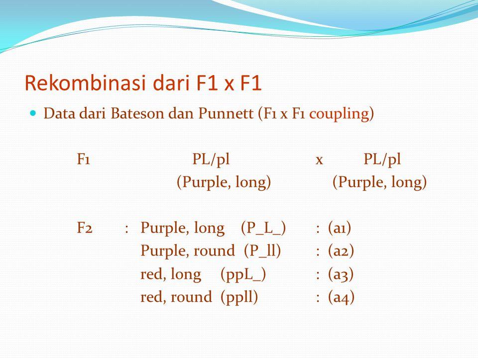 Rekombinasi dari F1 x F1 Data dari Bateson dan Punnett (F1 x F1 coupling) F1 PL/plxPL/pl (Purple, long) (Purple, long) F2: Purple, long (P_L_): (a1) P