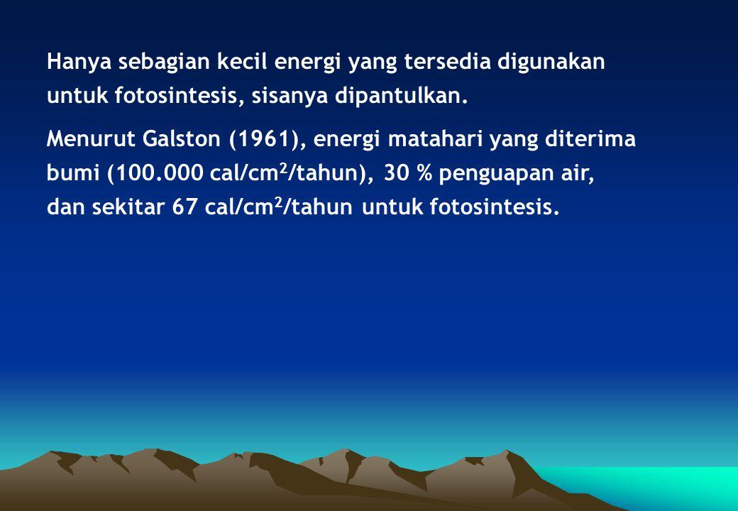 Hanya sebagian kecil energi yang tersedia digunakan untuk fotosintesis, sisanya dipantulkan. Menurut Galston (1961), energi matahari yang diterima bum