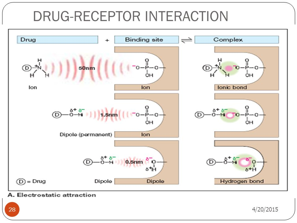 DRUG-RECEPTOR INTERACTION 4/20/2015 28