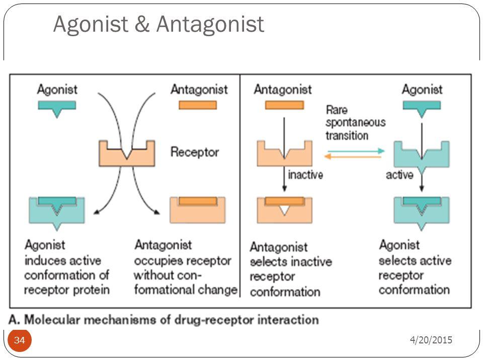 Agonist & Antagonist 4/20/2015 34
