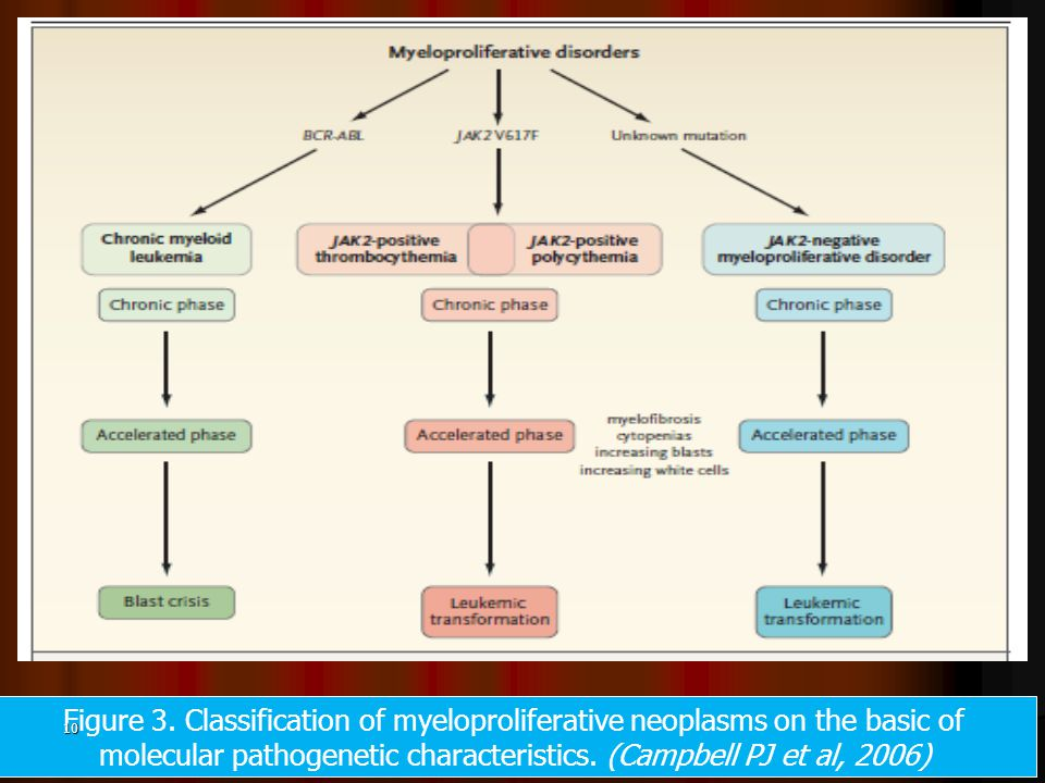 Figure 3. Classification of myeloproliferative neoplasms on the basic of molecular pathogenetic characteristics. (Campbell PJ et al, 2006) 10