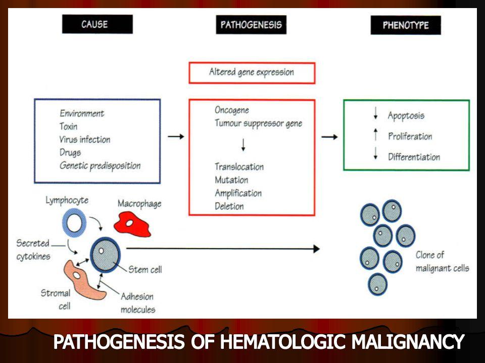 Diagnosis KlinisSitomorfologiSitokimiaImmunophenotypeSitogenetikMolecular