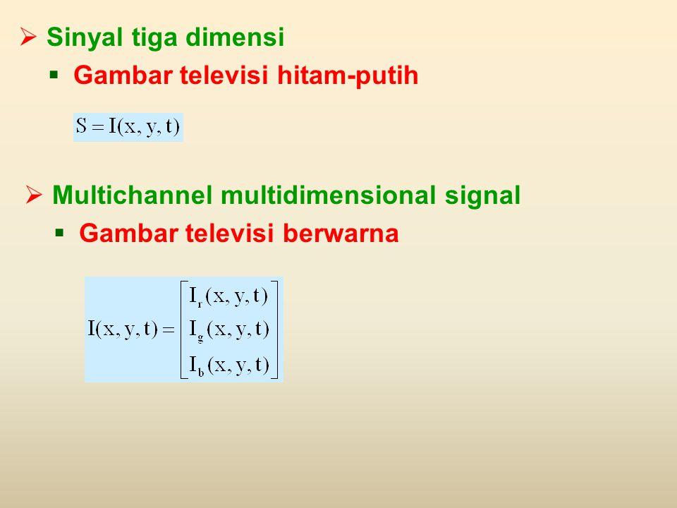  Sinyal tiga dimensi  Gambar televisi hitam-putih  Multichannel multidimensional signal  Gambar televisi berwarna