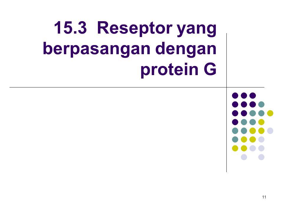 11 15.3 Reseptor yang berpasangan dengan protein G