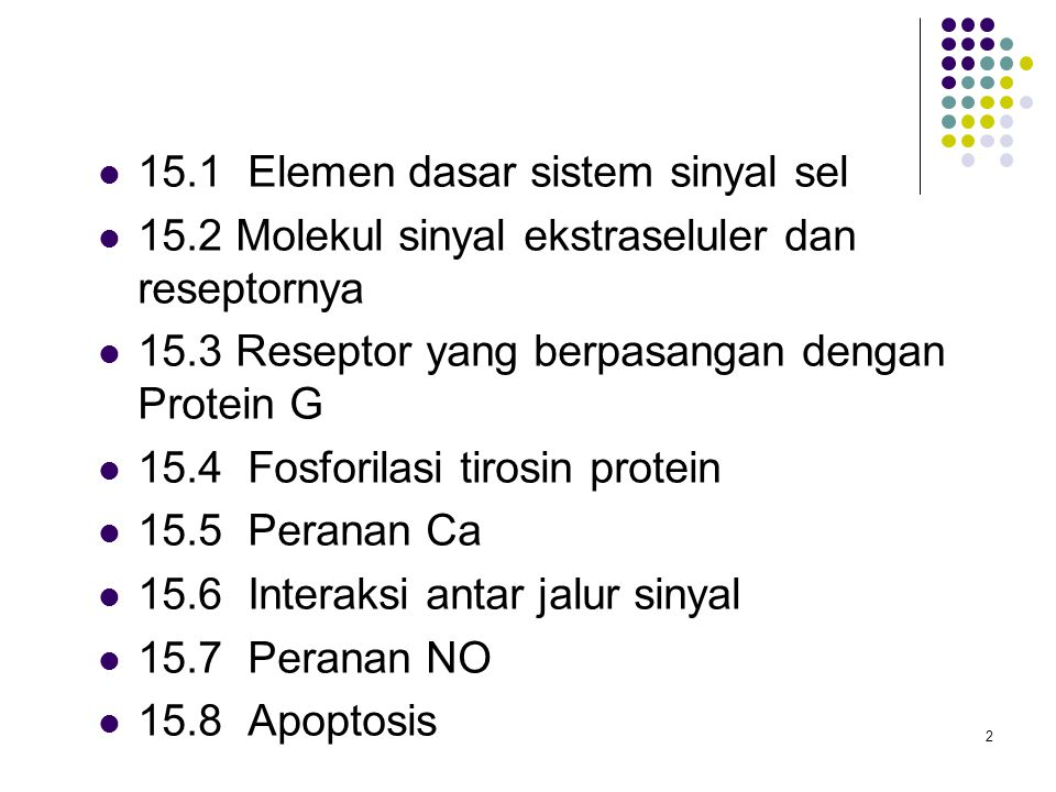 33 Kelompok protein sinyal Protein adaptor Menghubungkan dua protein sinyal atau lebih Mempunyai Domain SH2 Domain interaksi protein- protein Enzim Kinase protein, fosfatase protein, kinase lipid, fosfolipase, protein pengaktivasi GTPase Mempunyai domain SH2 Aktivasi dengan cara Translokasi ke membran Perubahan allosterik Fosforilasi Protein docking Menyediakan reseptor dengan tambahan residu Tyr untuk difosforilasi oleh reseptor Mempunyai domain SH2 atau PTB Faktor transkripsi Keluarga protein STAT yang berperan dalam sistem imun Mempunyai domain SH2 sisi fosforilasi Tyr, yang dapat terikat domain SH2 protein STAT lain Dimer pindah ke inti sel dan menyebabkan transkripsi gen-gen yang terlibat respons imun