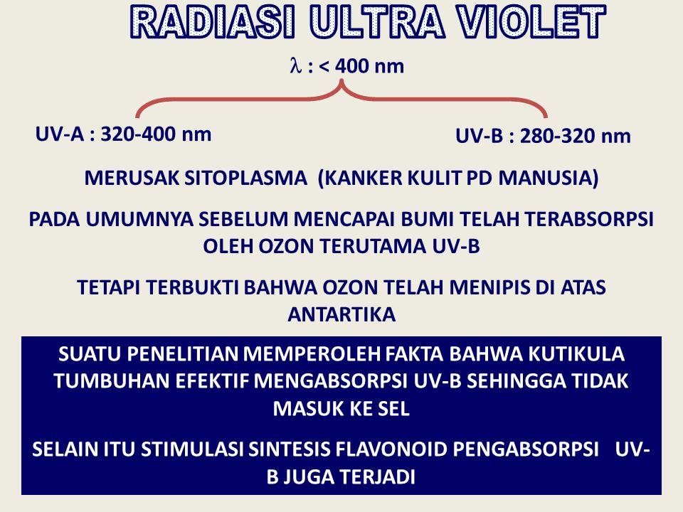 : < 400 nm UV-A : 320-400 nm UV-B : 280-320 nm MERUSAK SITOPLASMA (KANKER KULIT PD MANUSIA) PADA UMUMNYA SEBELUM MENCAPAI BUMI TELAH TERABSORPSI OLEH