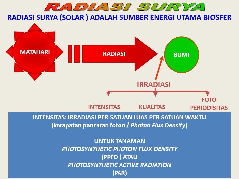 RADIASI SURYA (SOLAR ) ADALAH SUMBER ENERGI UTAMA BIOSFER MATAHARI RADIASI BUMI IRRADIASI INTENSITASKUALITAS FOTO PERIODISITAS INTENSITAS: IRRADIASI P