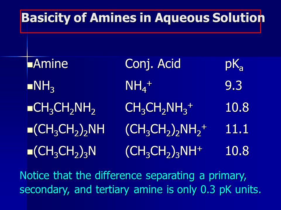 AmineConj. AcidpK a AmineConj. AcidpK a NH 3 NH 4 + 9.3 NH 3 NH 4 + 9.3 CH 3 CH 2 NH 2 CH 3 CH 2 NH 3 + 10.8 CH 3 CH 2 NH 2 CH 3 CH 2 NH 3 + 10.8 (CH