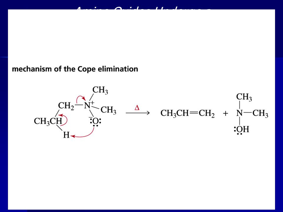 46 Amine Oxides Undergo a Cope Elimination Reaction