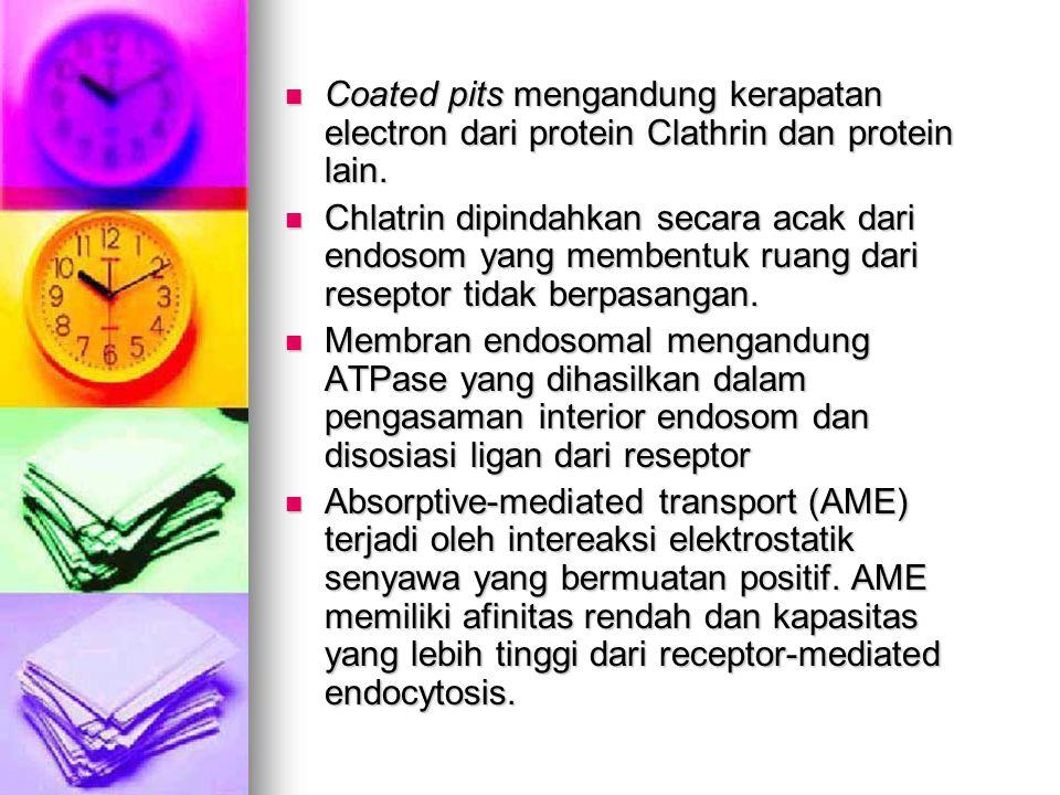 Coated pits mengandung kerapatan electron dari protein Clathrin dan protein lain. Coated pits mengandung kerapatan electron dari protein Clathrin dan