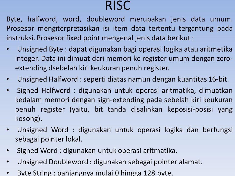 RISC Byte, halfword, word, doubleword merupakan jenis data umum. Prosesor mengiterpretasikan isi item data tertentu tergantung pada instruksi. Proseso
