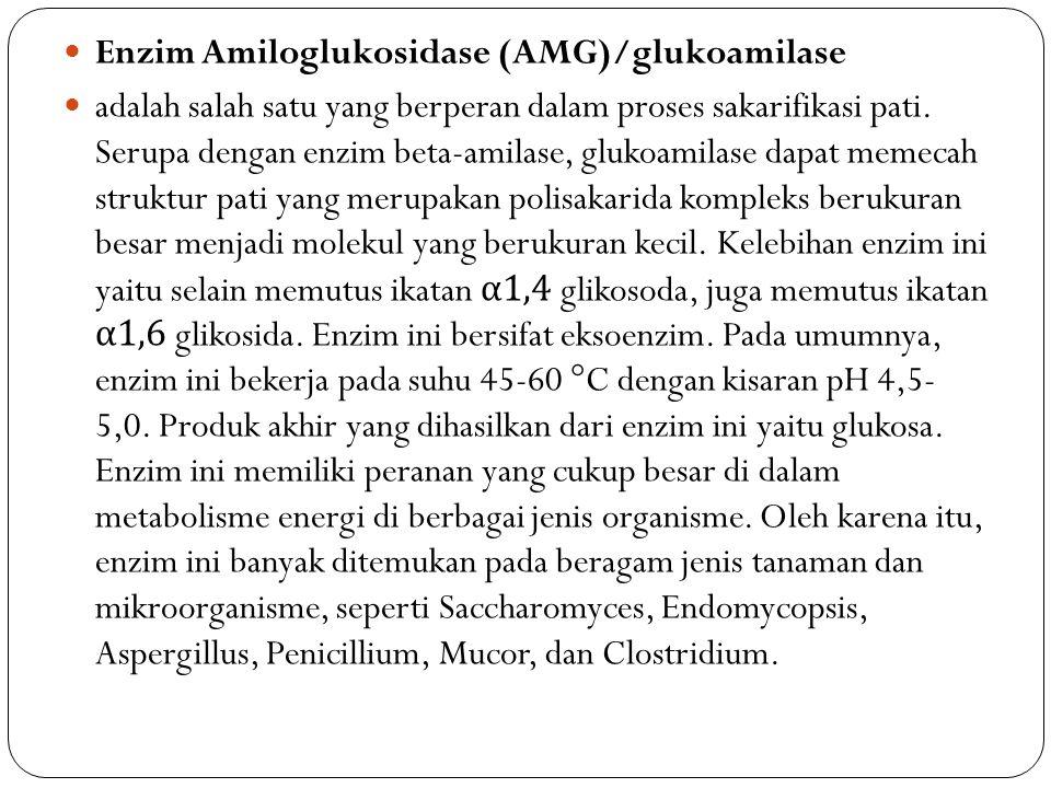 Enzim Amiloglukosidase (AMG)/glukoamilase adalah salah satu yang berperan dalam proses sakarifikasi pati. Serupa dengan enzim beta-amilase, glukoamila