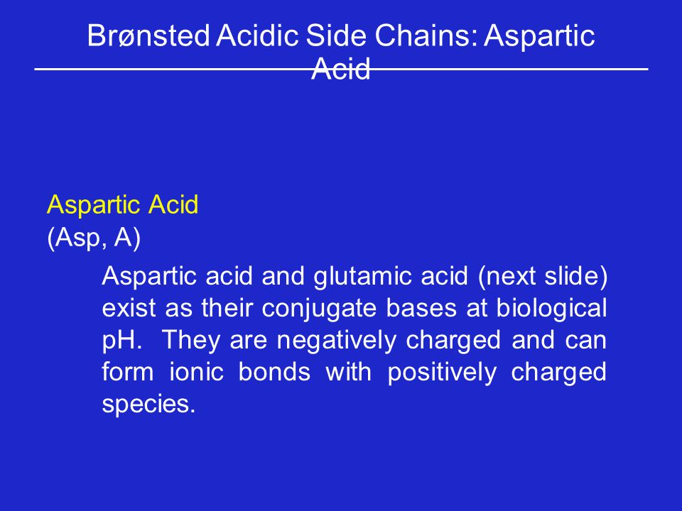 Brønsted Acidic Side Chains: Aspartic Acid Aspartic Acid (Asp, A) Aspartic acid and glutamic acid (next slide) exist as their conjugate bases at biolo