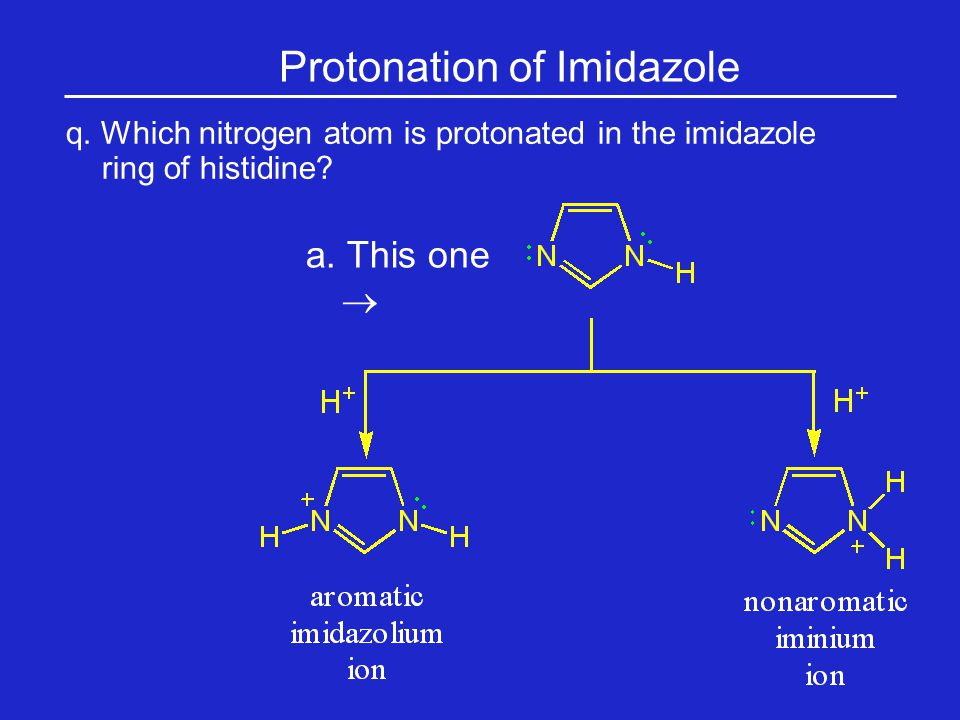 q.Which nitrogen atom is protonated in the imidazole ring of histidine.