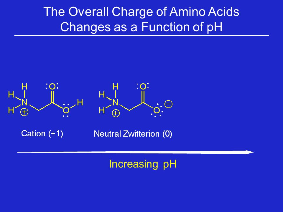 The Overall Charge of Amino Acids Changes as a Function of pH Increasing pH
