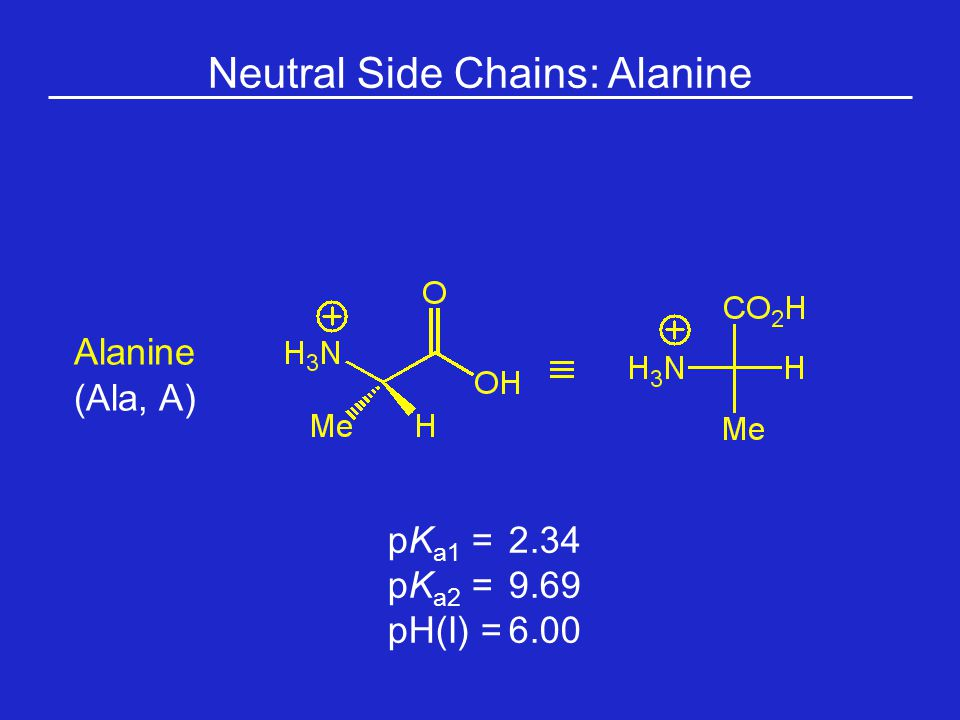 Neutral Side Chains: Alanine Alanine (Ala, A) pK a1 = 2.34 pK a2 =9.69 pH(I) =6.00