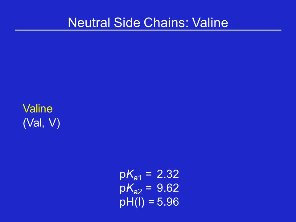 Neutral Side Chains: Valine Valine (Val, V) pK a1 = 2.32 pK a2 =9.62 pH(I) =5.96