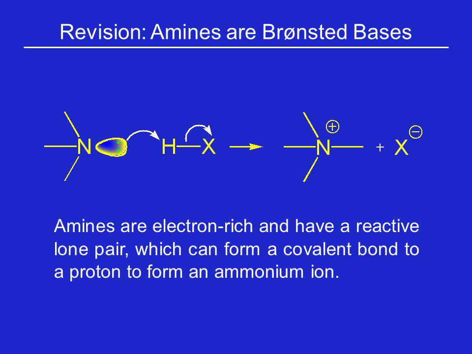 Polar, Non-Ionized Side Chains: Asparagine The side chains of asparagine and glutamine (next slide) terminate in amide functions that are polar and can engage in hydrogen bonding.