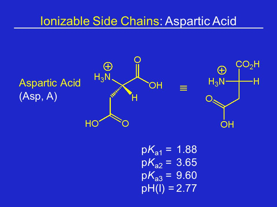 Ionizable Side Chains: Aspartic Acid Aspartic Acid (Asp, A) pK a1 = 1.88 pK a2 =3.65 pK a3 =9.60 pH(I) =2.77