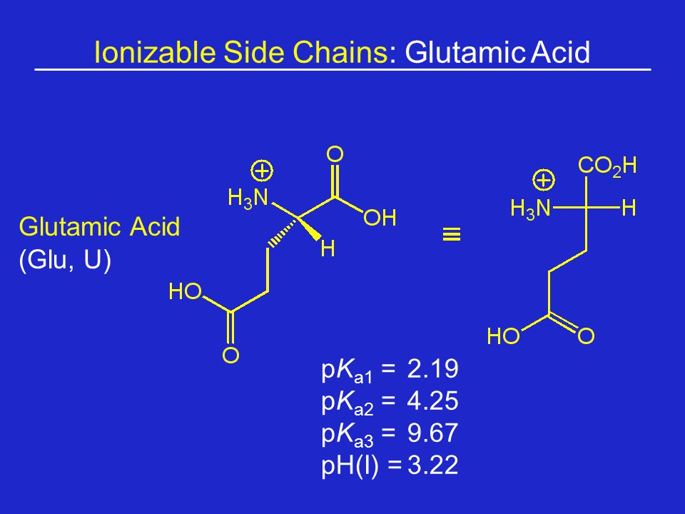 Ionizable Side Chains: Glutamic Acid Glutamic Acid (Glu, U) pK a1 = 2.19 pK a2 =4.25 pK a3 =9.67 pH(I) =3.22