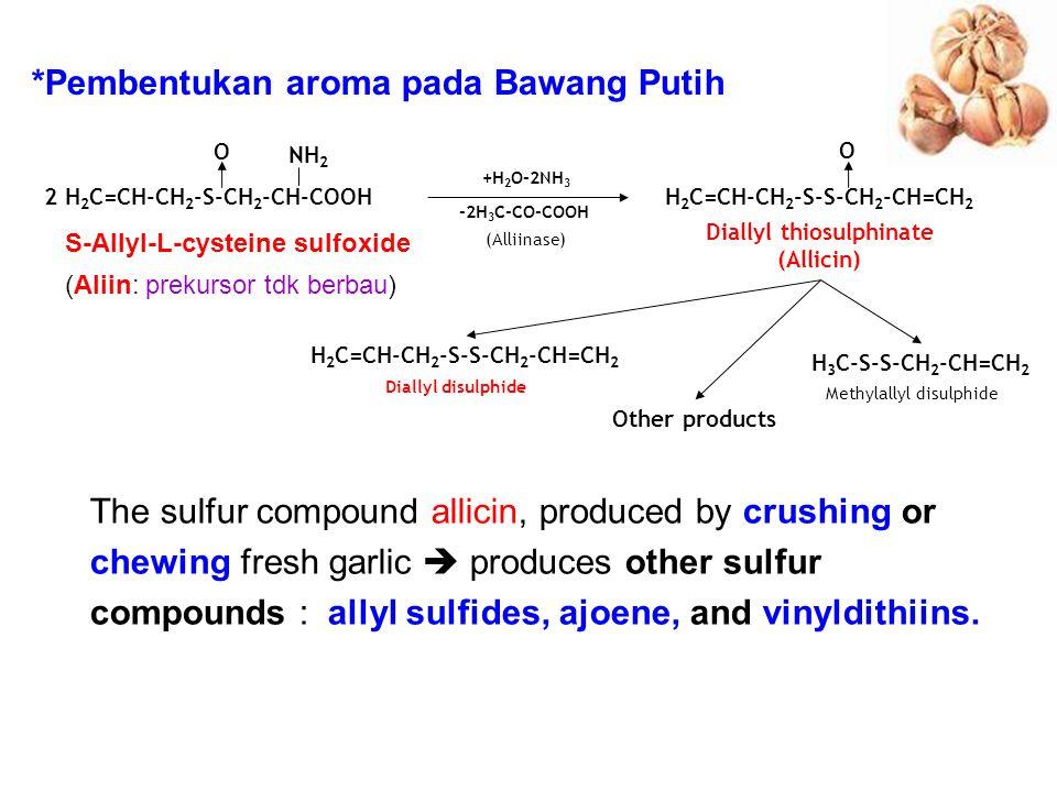 2 H 2 C=CH-CH 2 -S-CH 2 -CH-COOH NH 2 O H 2 C=CH-CH 2 -S-S-CH 2 -CH=CH 2 O Diallyl thiosulphinate (Allicin) +H 2 O-2NH 3 -2H 3 C-CO-COOH (Alliinase) H