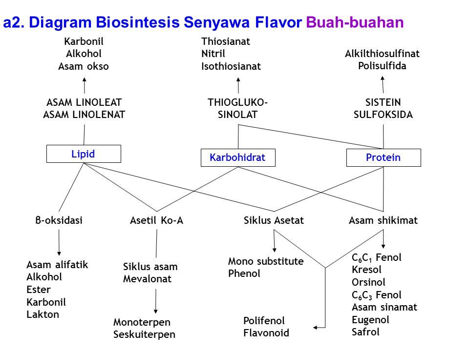 Karbonil Alkohol Asam okso Thiosianat Nitril Isothiosianat Alkilthiosulfinat Polisulfida ASAM LINOLEAT ASAM LINOLENAT THIOGLUKO- SINOLAT SISTEIN SULFO