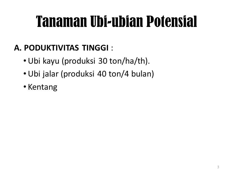 Tanaman Ubi-ubian Potensial A.PODUKTIVITAS TINGGI : Ubi kayu (produksi 30 ton/ha/th).