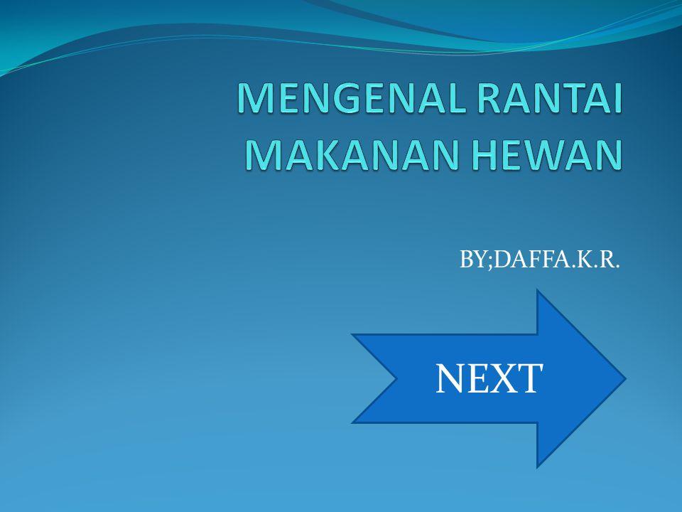 BY;DAFFA.K.R. NEXT