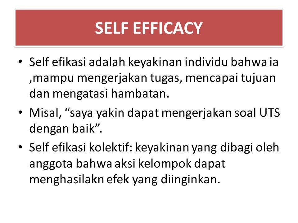SELF EFFICACY Self efikasi adalah keyakinan individu bahwa ia,mampu mengerjakan tugas, mencapai tujuan dan mengatasi hambatan.