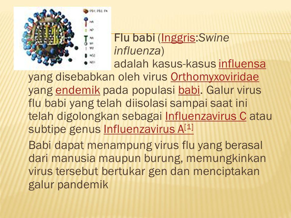 ` Flu babi (Inggris:Swine influenza) adalah kasus-kasus influensa yang disebabkan oleh virus Orthomyxoviridae yang endemik pada populasi babi.