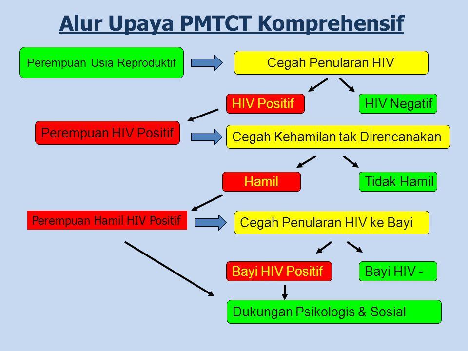 Perempuan Hamil HIV Positif Alur Upaya PMTCT Komprehensif Perempuan Usia Reproduktif Cegah Penularan HIV HIV PositifHIV Negatif Perempuan HIV Positif