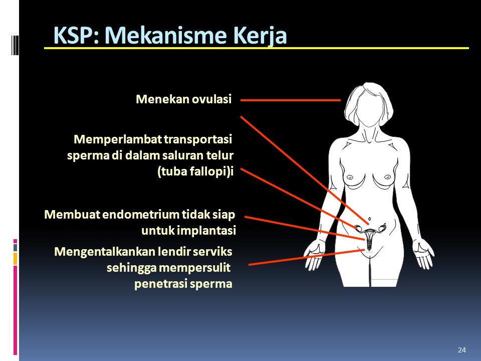 KSP: Mekanisme Kerja 24 Menekan ovulasi Memperlambat transportasi sperma di dalam saluran telur (tuba fallopi)i Membuat endometrium tidak siap untuk i