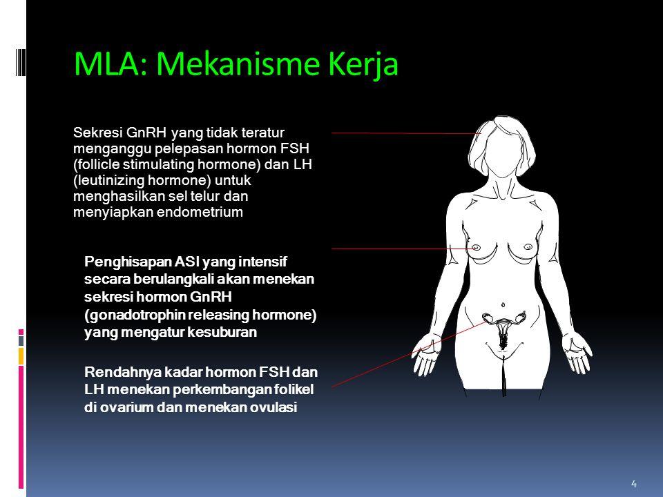 MLA: Mekanisme Kerja Sekresi GnRH yang tidak teratur menganggu pelepasan hormon FSH (follicle stimulating hormone) dan LH (leutinizing hormone) untuk