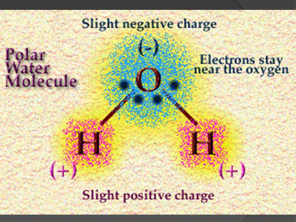 Pelarut air  Tetapan dielektrik ~81,7 cocok untuk pelarut senyawa ion  Universal, melimpah  titik beku 0 o C dan titik didih 100 o C, cocok untuk d