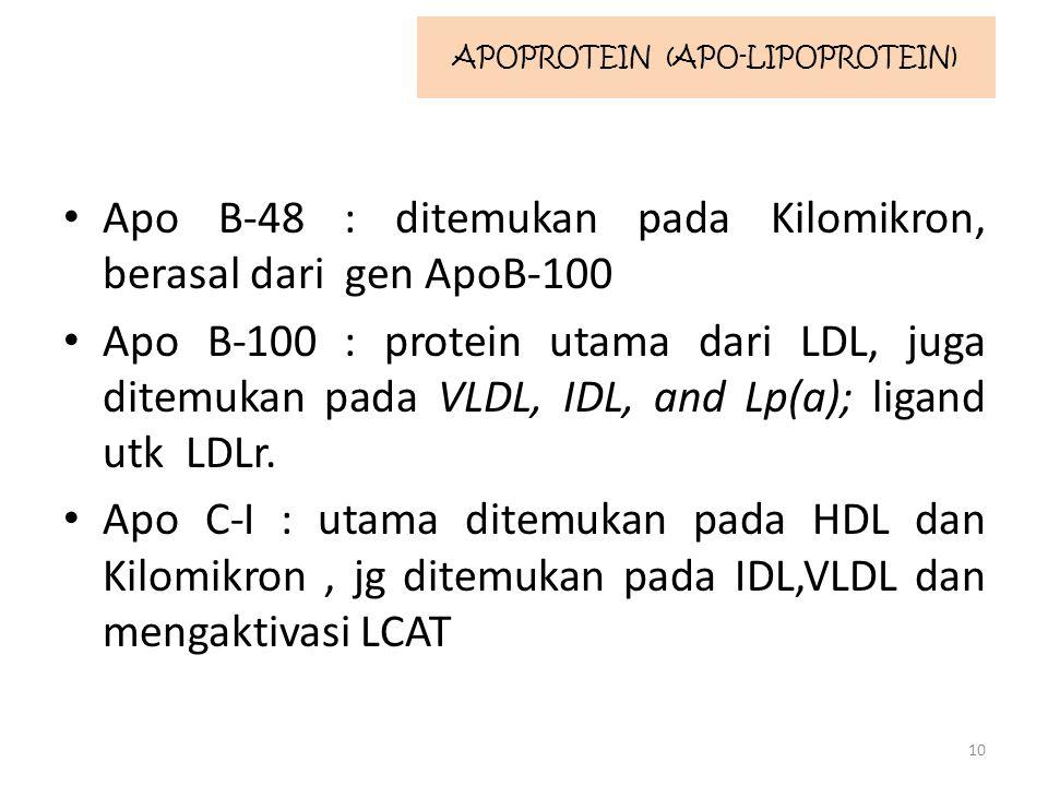 Apo B-48 : ditemukan pada Kilomikron, berasal dari gen ApoB-100 Apo B-100 : protein utama dari LDL, juga ditemukan pada VLDL, IDL, and Lp(a); ligand utk LDLr.