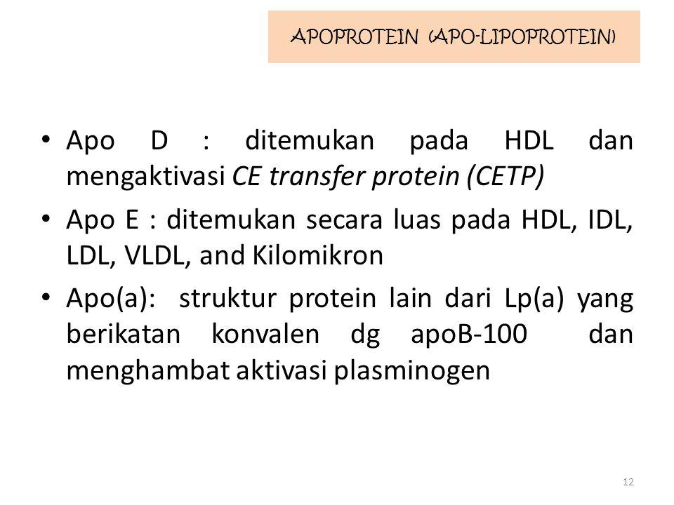 Apo D : ditemukan pada HDL dan mengaktivasi CE transfer protein (CETP) Apo E : ditemukan secara luas pada HDL, IDL, LDL, VLDL, and Kilomikron Apo(a): struktur protein lain dari Lp(a) yang berikatan konvalen dg apoB-100 dan menghambat aktivasi plasminogen 12 APOPROTEIN (APO-LIPOPROTEIN)