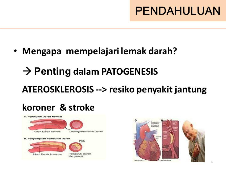 LEMAK DARAH (LIPID)  Cholesterol (20%)  Trigliserida (30%)  Fosfolipid (45%)  Asam lemak 3
