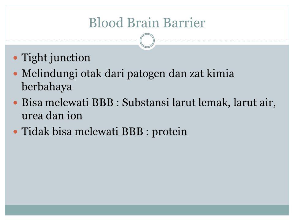 Blood Brain Barrier Tight junction Melindungi otak dari patogen dan zat kimia berbahaya Bisa melewati BBB : Substansi larut lemak, larut air, urea dan ion Tidak bisa melewati BBB : protein