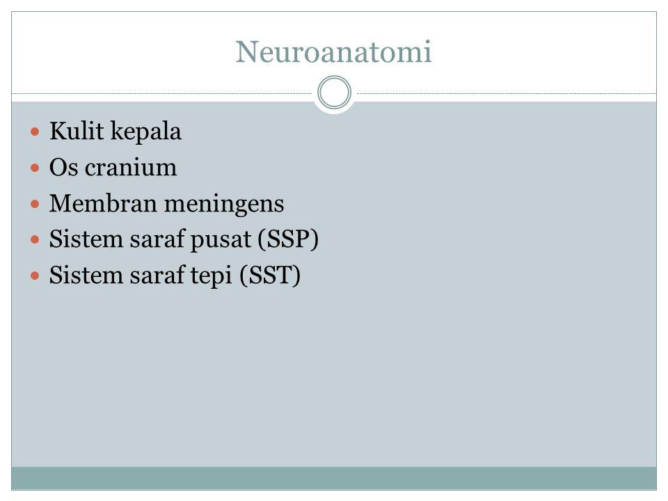 Neuroanatomi Kulit kepala Os cranium Membran meningens Sistem saraf pusat (SSP) Sistem saraf tepi (SST)